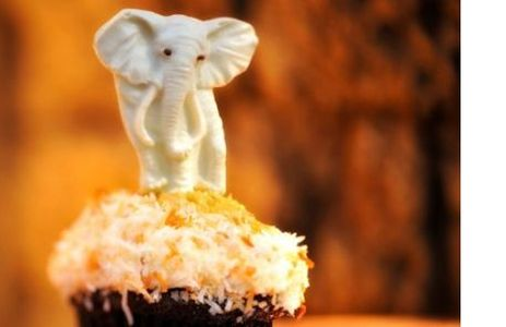 White Chocolate Elephant Cupcake do Kusafiri
