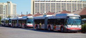 Walt Disney Bus Service - Novos Veículos